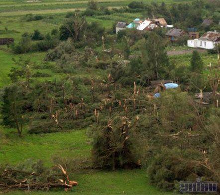 Зламані ураганом дерева біля районного центру Волинської обл. м. Турійська, 24 липня 2007 р.