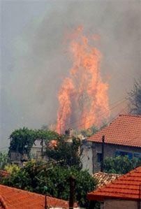 Пожежа, спричинена спекою, у с. Маврики на півдні Греції. (AP Photo)