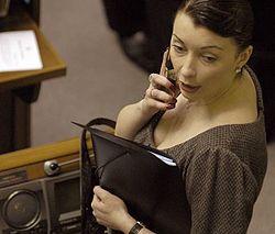 Елена Лукаш на заседании в сессионном зале Верховной Рады. Киев, 14 декабря