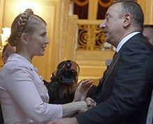 Тимошенко, Алиев