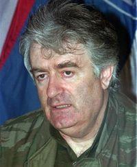 Радован Караджич. Фото АР