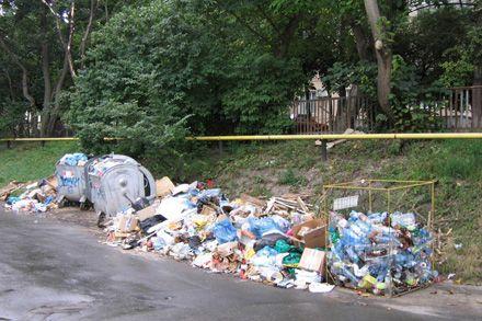 Попов ездит по Киеву в поисках мусора