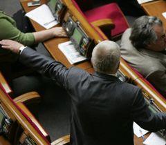 Михайло Чечетов керує голосуванням фракції. Київ, 14 квітня