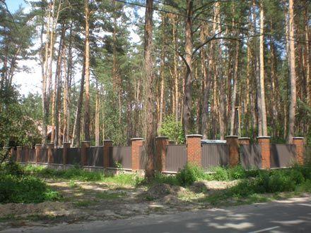 """""""Фортеця"""" хмельницького чиновника розкинулася на 1,3 га лісових угідь"""