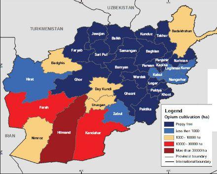 По данным Управления ООН по наркотикам и преступности, на провинции, отмеченные красным и бордовым, приходится самая большая доля производства мака в Афганистане