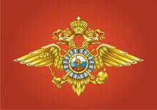 МВД России готово пресекать
