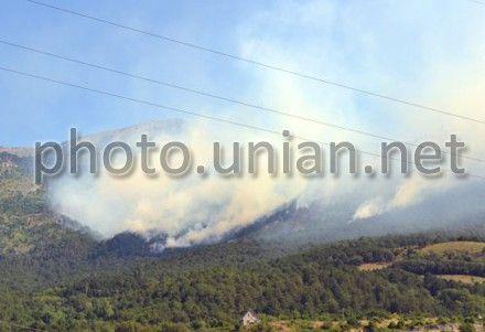 На тушение пожара бросили 73 единицы техники