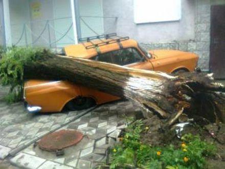 Фото с сайта 0552.com.ua
