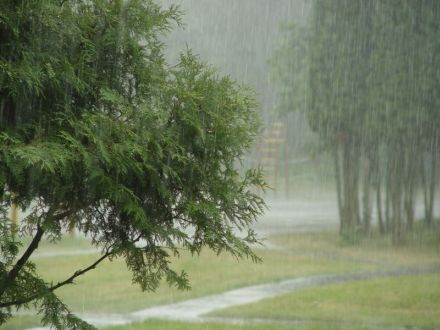 В Украине снова пройдут дожди, krd.ru
