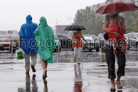 Дожди ожидаются в западных областях Украины, Житомирской и Винницкой областях