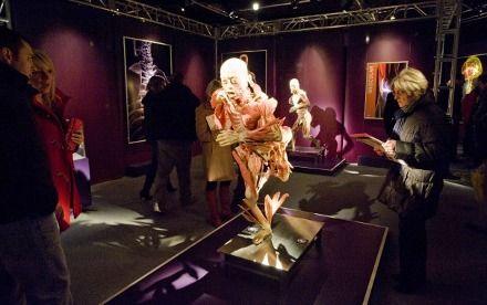 На выставке человеческих тел Human body exhibition