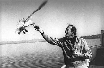 Ричар Бах пилотировал самолет сам, фото www.lookatme.ru