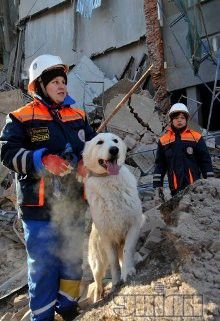Поиск людей под завалами на обрушении дома в Харькове, фото из архива УНИАН