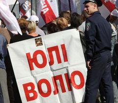За время пребывания Тимошенко в тюрьме Януковичу было направлено более 100 разных ходатайств о ее помиловании
