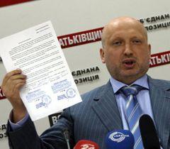 Турчинов назвал заявления Рыбака бестолковыми