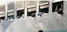В автобусе во время его столкновения с поездом находилось 67 детей