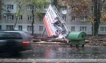 В Одессе на дорогах возникли заторы из-за падения деревьев. Фото http://www.odessa.ua/
