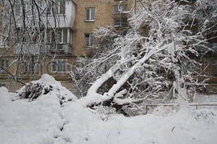 Электроснабжение отсутствует в 83 н.п. Крыму, а также в 8 н.п. Киевской и 2 - Житомирской областей