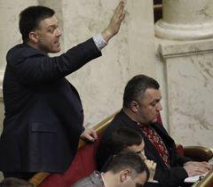 Тягнибок напугал евродепутатов