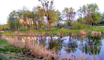 Землю возле озера вернули киевлянам / Фото: guidekiev.com