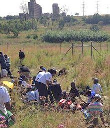 Два поезда столкнулись в пригороде Претории / Фото: 24.co.za