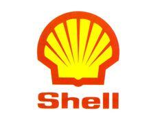 Shell готова вложиться в украинский институт