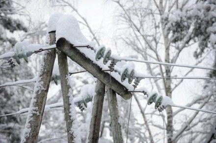 Фото : dt.ua