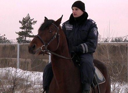 Милиция арендует стойла для коней за почти полмиллиона / Фото с сайта МВД