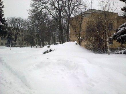 В Житомире выпало более месячной нормы снега / Фото : vk.com, Зоряна Пузняк