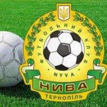 ФК «Нива» финансирует бизнесмен Дмитрий Фирташ / Фото: galsports.com