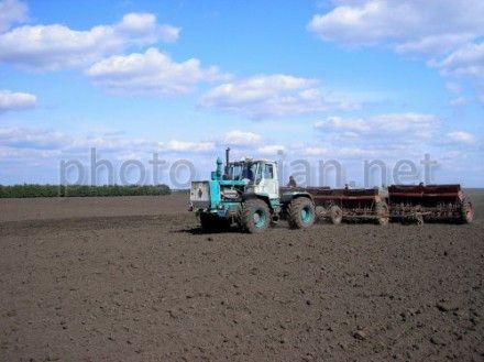 В Украине выросло сельхозпроизводство