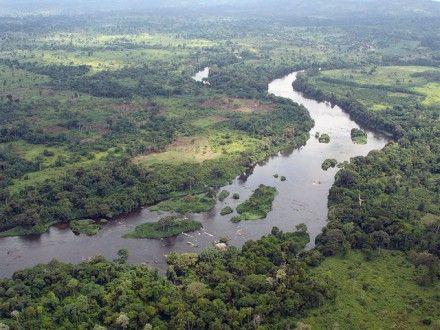 Камбоджа страдает от последствий наводнения / Фото: vesti.ru
