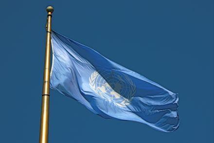 Украина не поддержала резолюцию ООН / Фото: nations.wikia.com