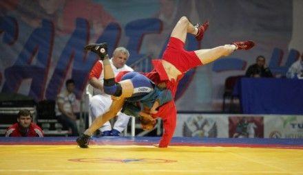 Украинцы завоевали 34 медали / Фото: sportanalytic.com