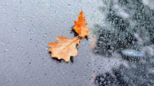 В Украине сохранится преимущественно пасмурная и дождливая погода