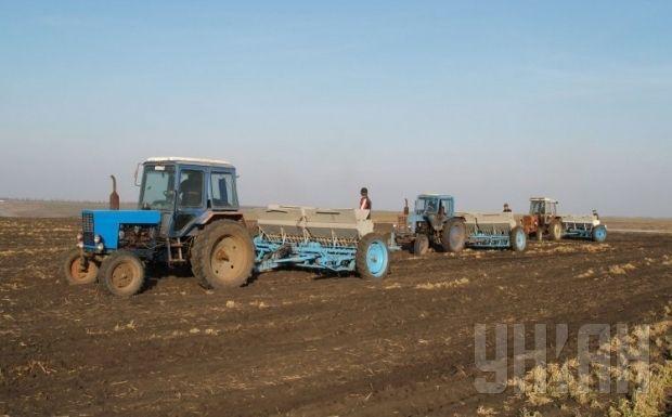 Кабмин должен принять необходимые для аграриев законы / Фото УНИАН