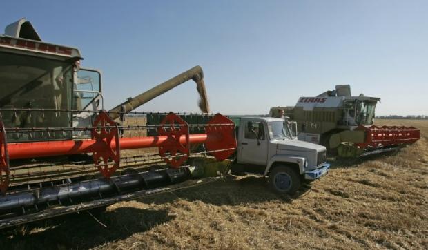 Украина может собрать рекордные за годы независимости 64 млн тонн зерна / Фото УНИАН