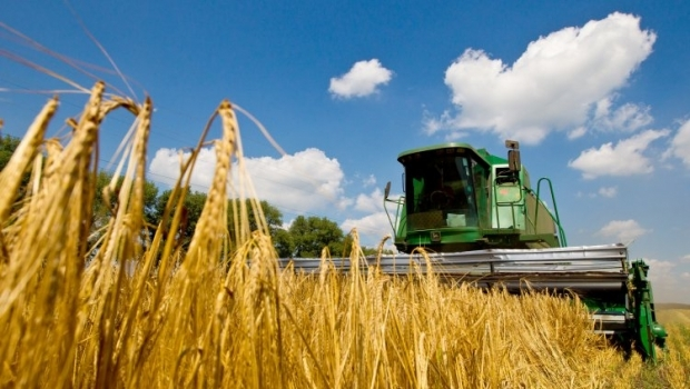 The gross yield of grain in Ukraine in 2015 is expected at 59.5 million tonnes / Photo from UNIAN