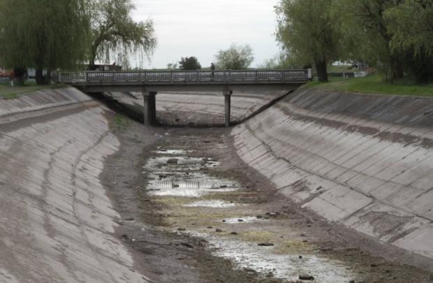 В Крыму погиб урожай риса из-за нехватки воды