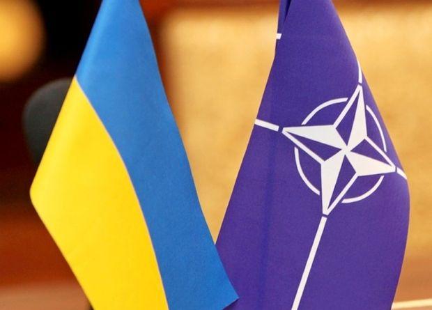 В Украине растет число сторонников вступления страны в НАТО / фото mil.gov.ua