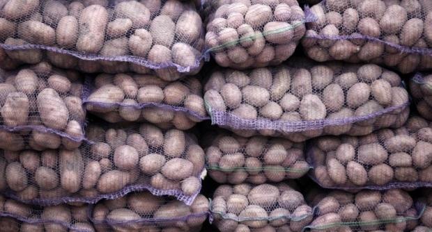 Россия не пустила в Крым украинскую картошку / Фото УНИАН
