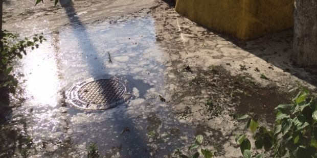 Вода заповнила вулицю і територію біля будинків / Роман Литвиненко