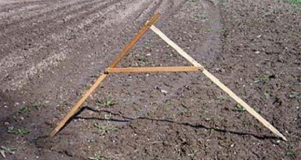 Проблема финансирования в 2015 году будет для аграриев острой / despravda.com