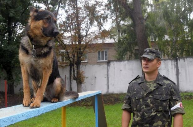 Кинологи с собаками будут патрулировать метро в Киеве / УНИАН
