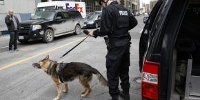 Полиция установила личность канадского стрелка