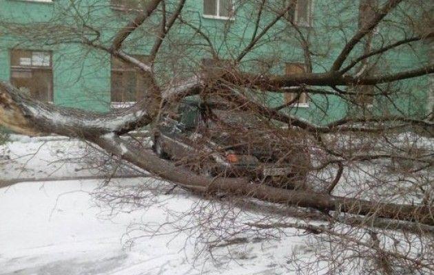 Погода на завтра в сенной саратовская область