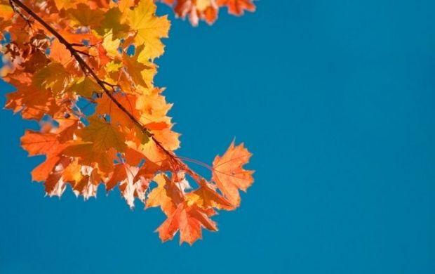 Днем температура составит 5-10° тепла / Фото : flickr.com/photos