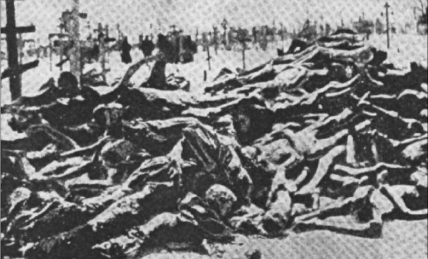 Голодомор став відповіддю на антибільшовицькі повстання - історик