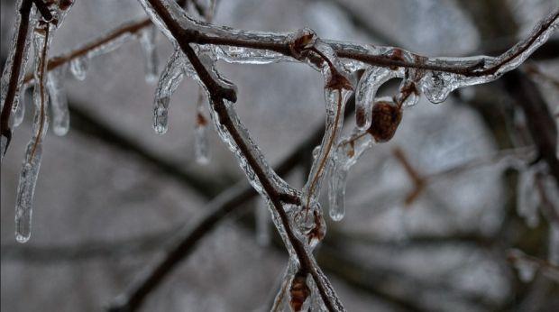 Синоптики обещают дождь, мороз и сильный штормовой ветер / flickr.com/photos/112105995@N05