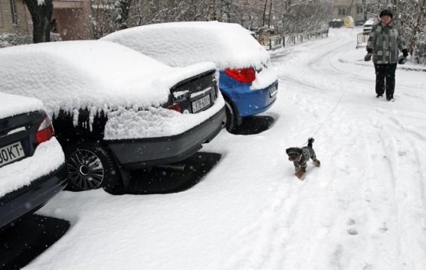 В Киеве сегодя выпал первый снег / Фото УНИАН